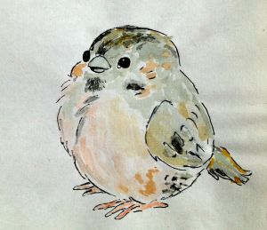water colour ink chubby bird